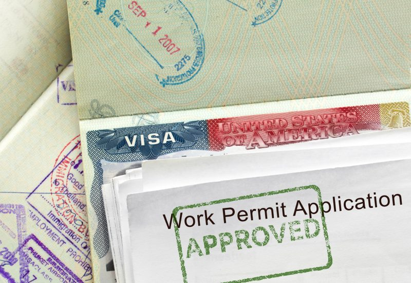 Non Immigrant Employment Related Visas